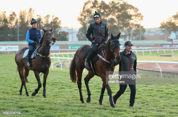 Trainer Chris Waller leads Winx ridden by Hugh Bowman and Forgotten ridden by Kerrin McEvoy after a trackwork session at Rosehill Gardens on...