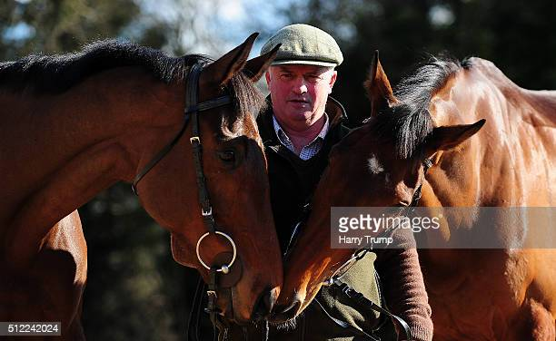 Trainer Colin Tizzard poses with Thistlecrack and Cue Card at Spurles Farm on February 25 2016 in Sherborne England