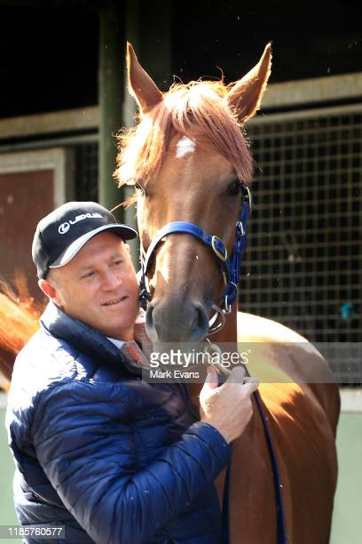 Trainer Danny O'Brien poses with Vow And Declare during the Melbourne Cup Winning media opportunity at Danny O'Brien Racing's Stables on November 06...