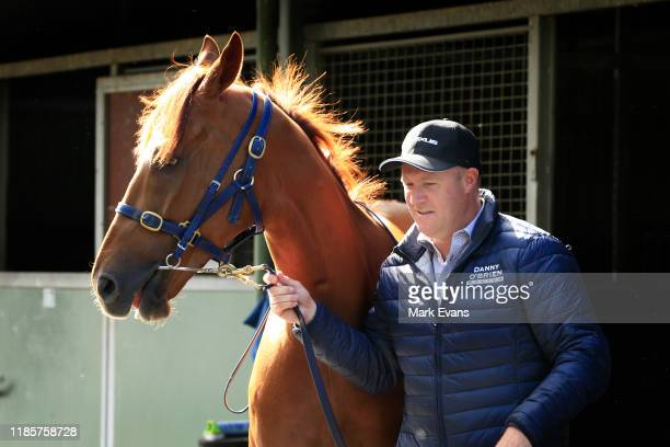 Trainer Danny O'Brien walks Vow And Declare during the Melbourne Cup Winning media opportunity at Danny O'Brien Racing's Stables on November 06, 2019...
