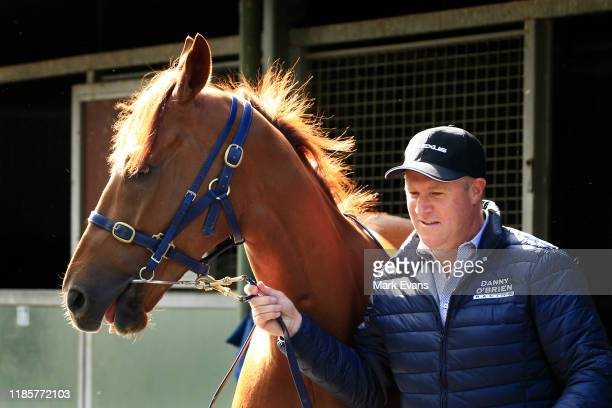 Trainer Danny O'Brien with Vow And Declare during the Melbourne Cup Winning media opportunity at Danny O'Brien Racing's Stables on November 06, 2019...