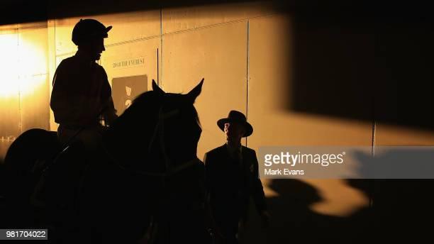 Trainer Gayna Williams looks on during Sydney Racing at Royal Randwick Racecourse on June 23 2018 in Sydney Australia