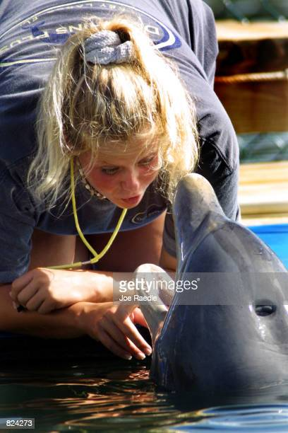 Trainer Holli Byerley talks with a bottlenose dolphin during the structured swim May 4 2001 at the Dolphins Plus marine mammal research and education...