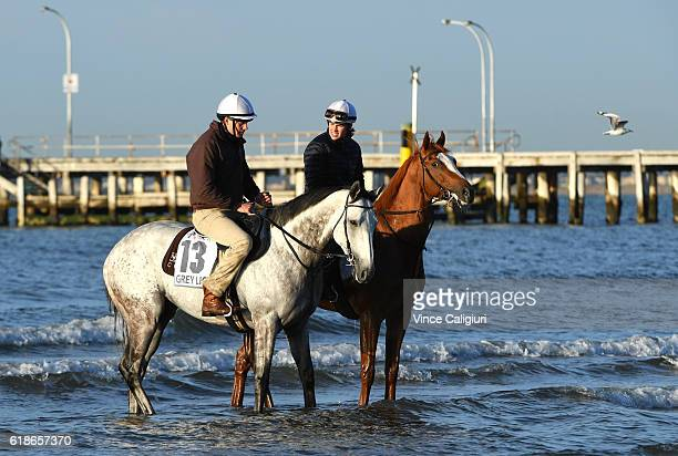 Trainer Matt Cumani riding Grey Lion and sister Francesca Cumani riding Gallic Chieftain walk in the shallow waters of Altona Beach in preparation...