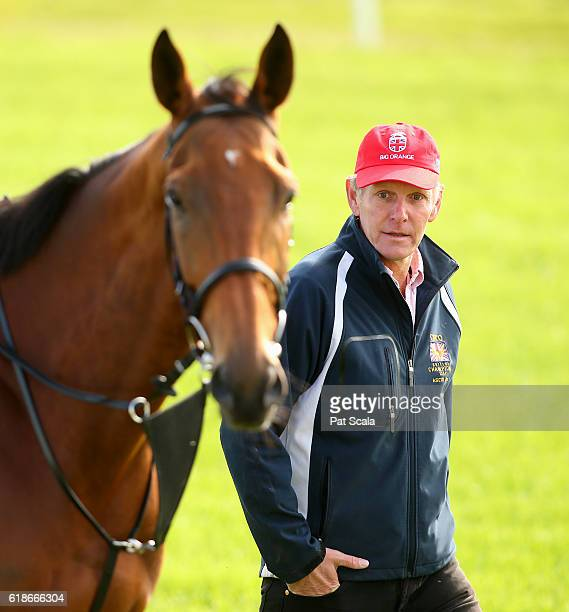 Trainer Michael Bell keeps an eye on Big Orange during trackwork at Werribee Racecourse on October 28 2016 in Werribee Australia