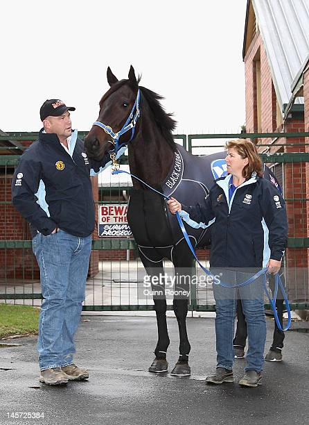 Trainer Peter Moody and his horse Black Caviar stand infront of the cameras during a media opportunity at Caulfield Racecourse on June 5 2012 in...