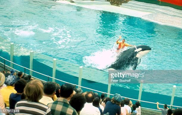 Trainer reitet auf OrcaWal Besucher Vorstellung Meeresthemenpark 'Seaworld Orlando' Florida Nordamerika USA Zuschauer TierDressur winken SchwimmWeste...