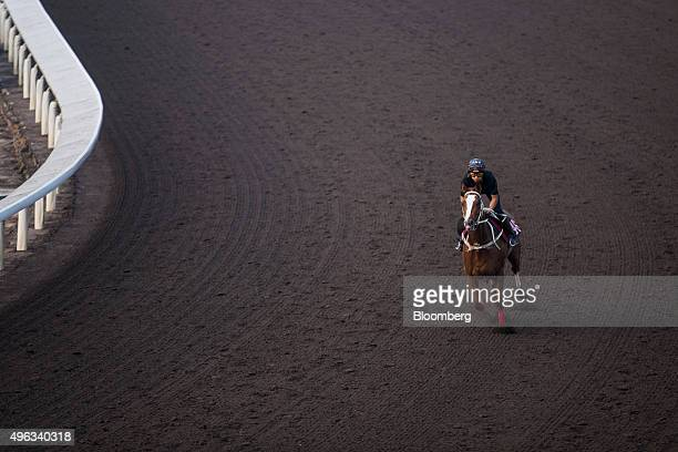 Trainer rides a horse during a morning trackwork session on the all-weather dirt track at the Sha Tin Racecourse, operated by Hong Kong Jockey Club,...
