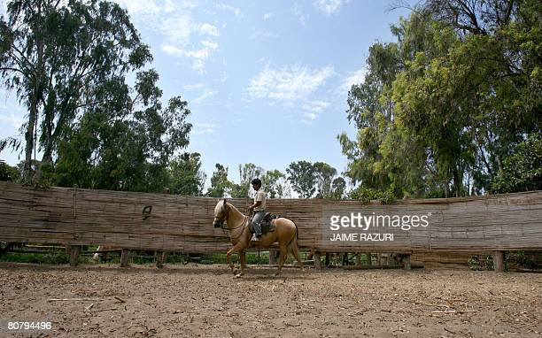 A trainer rides a Peruvian Pace Horse in Lurin 30 kms south of Lima on February 18 2008 The Peruvian Pace Horse is internationally renown due to its...