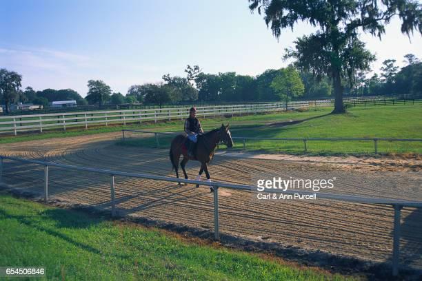 Trainer Riding Horse