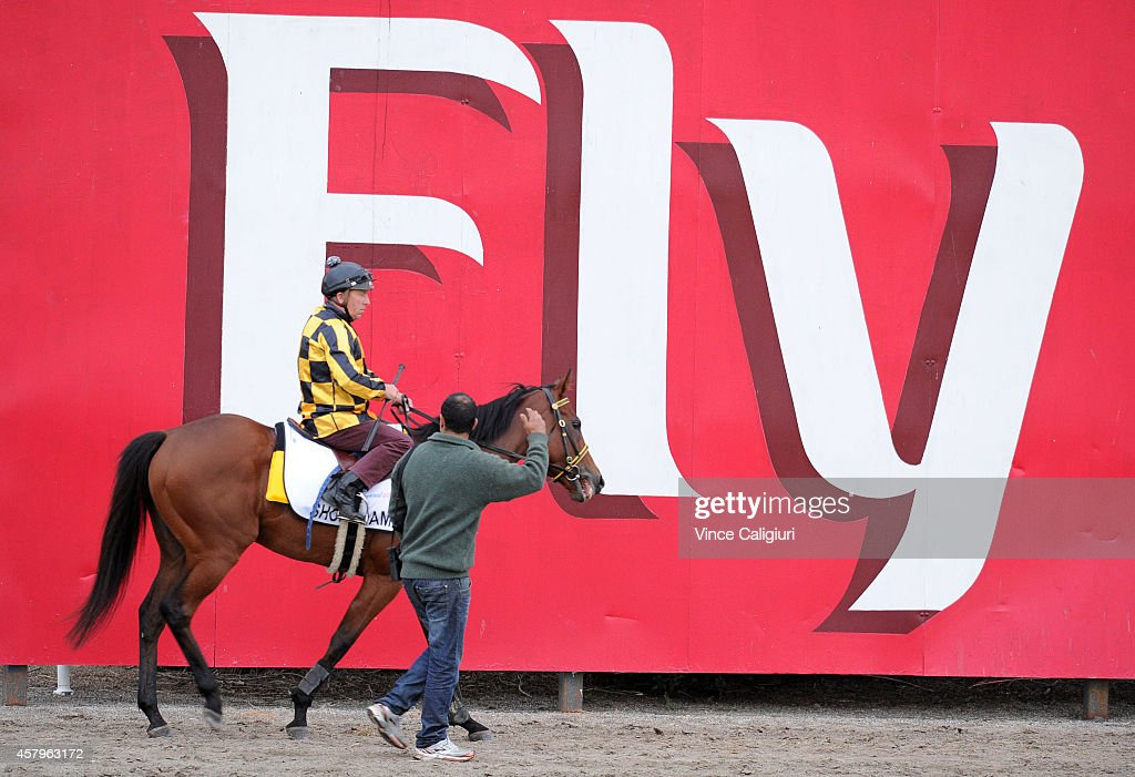 Trainer Saab Hasan talks with track rider aboard Shoreham after galloping with Contributer on the course proper at Flemington Racecourse on October 28, 2014 in Melbourne, Australia.