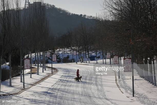 Trainer works with teaching a guide dog at China Guide Dog Training Center on January 24 2018 in Dalian Liaoning province China February 16th 2018 is...