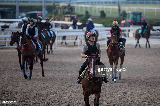 Trainers ride horses during a morning session at a training facility of the Sha Tin Racecourse, operated by Hong Kong Jockey Club, in Hong Kong,...