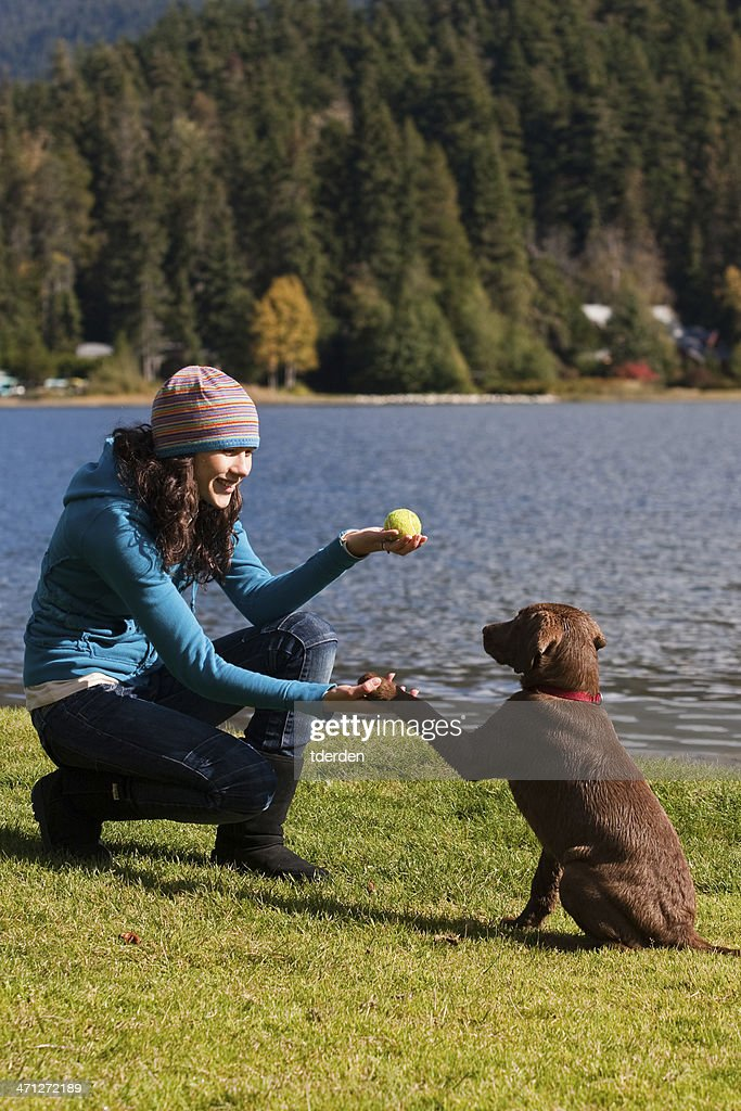Training a Puppy at the Park : Stock Photo
