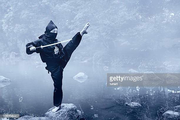 Training Ninja