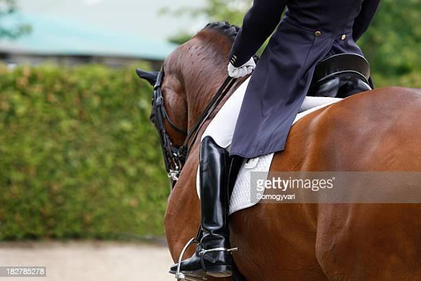 馬場馬術 - 馬場馬術 ストックフォトと画像