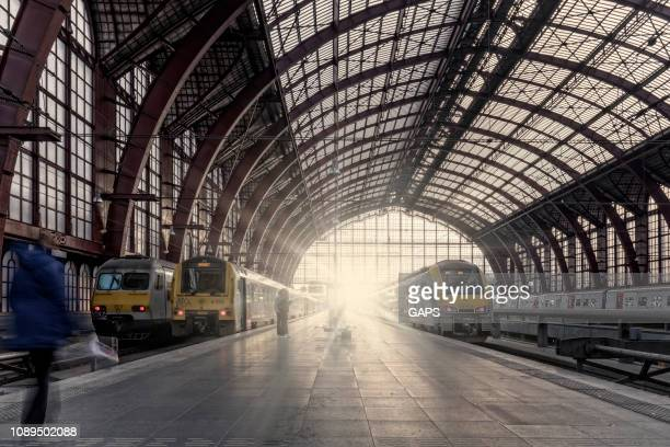 trains waiting for departure at antwerp central station - antwerp city belgium stock pictures, royalty-free photos & images