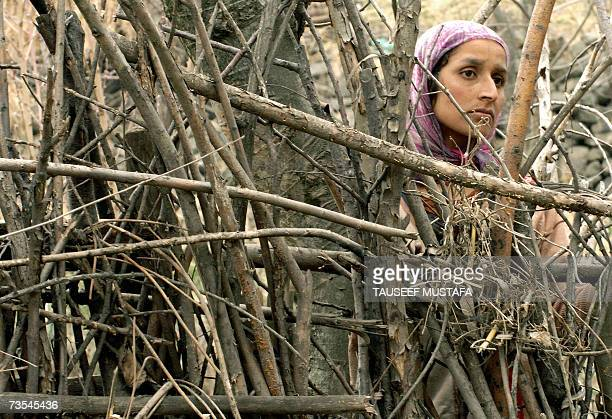 An Indian Kashmiri woman peers through a gap in stick fencing as Indian troops prevent her and others from entering a village as search operations...