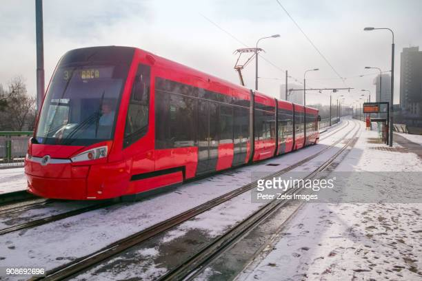 tram in bratislava, slovakia - traditionally slovak stock pictures, royalty-free photos & images