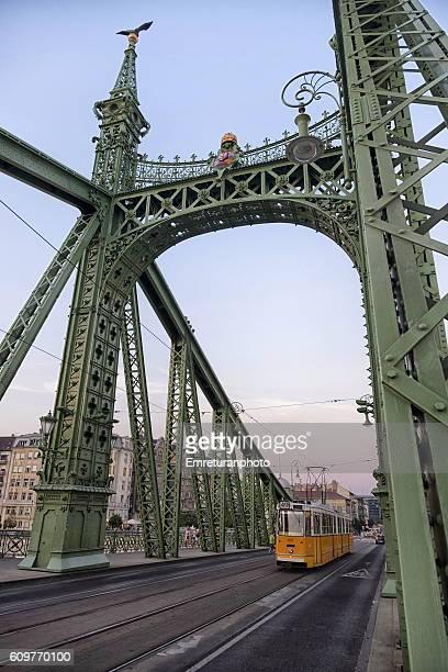 tram on liberty bridge,budapest - emreturanphoto stock pictures, royalty-free photos & images