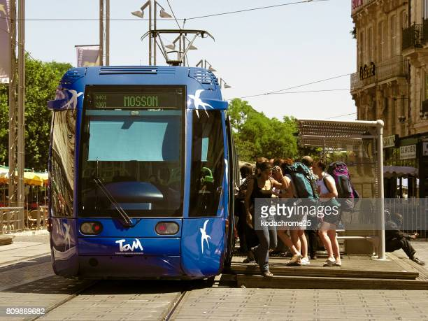 tram - montpellier stock pictures, royalty-free photos & images