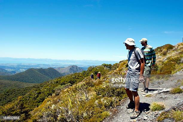 trampers on mt arthur track, motueka, new zealand. - kahurangi national park bildbanksfoton och bilder