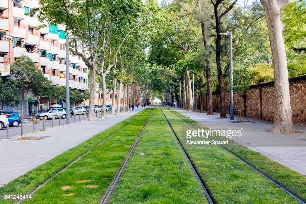 tramway railorad track with green grass in barcelona, spain - public transport stock pictures, royalty-free photos & images