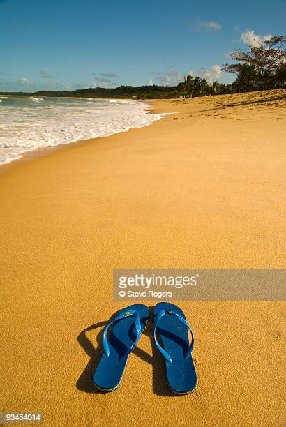trancoso beach - rogers arena fotografías e imágenes de stock