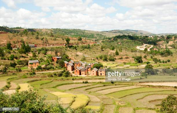 trano gasy or malagasy house and rice terraces, madagascar - antananarivo stock photos and pictures