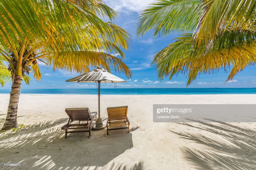 Tranquil Beach Scene Panoramic Tropical Beach Landscape For