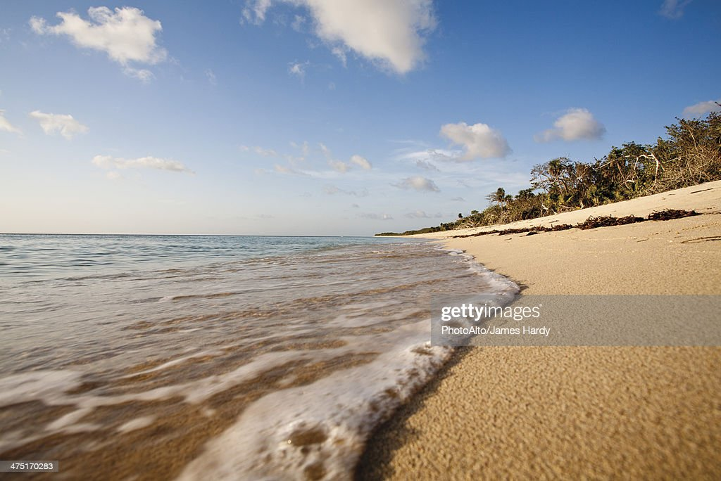 Tranquil beach scene : Stock Photo