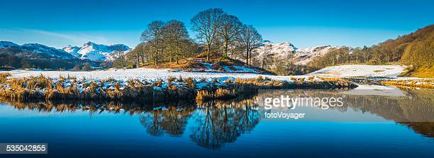 Tranquil blue lake reflecting snowy mountains stand of trees panorama