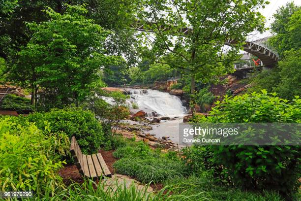 tranquil falls park in greenville - greenville south carolina stock photos and pictures