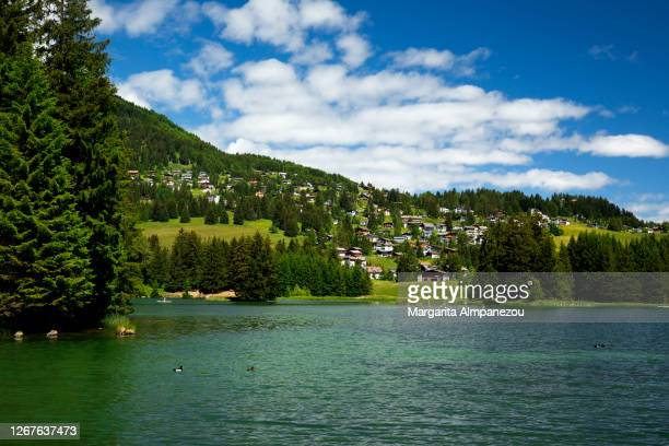 tranquil heidsee lake and the green mountain with cute houses in the background - レンツァーハイデ ストックフォトと画像