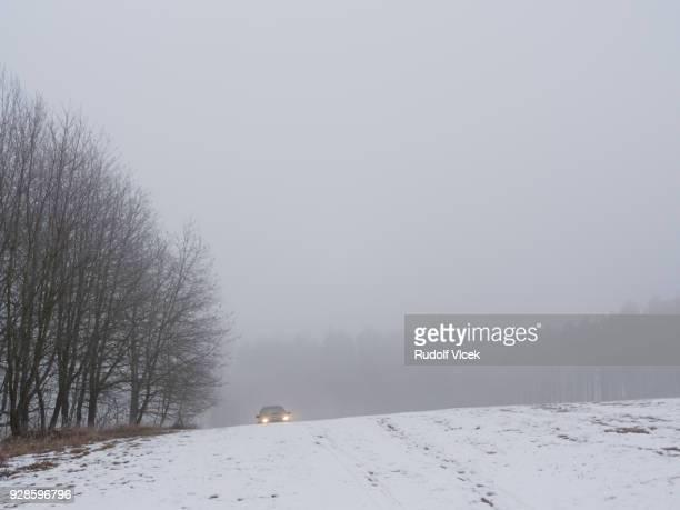 Tranquil misty winter scene, frozen bare trees, vehicle headlights in distance