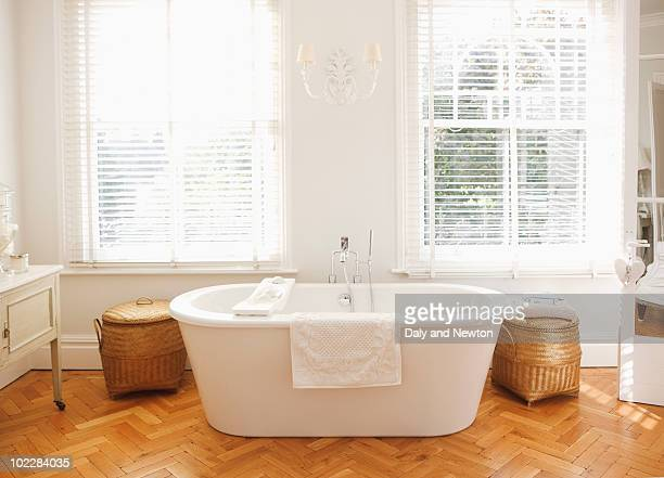 Tranquil, modern bathtub