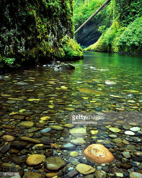 Tranquil pool with river rock by Punchbowl Falls