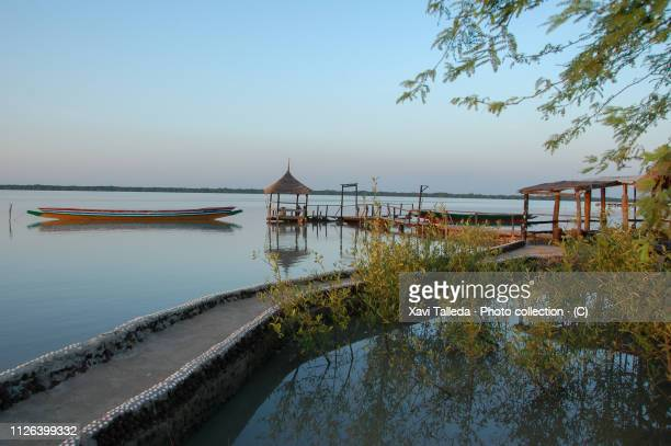 a tranquil retreat above the river - gambia - fotografias e filmes do acervo