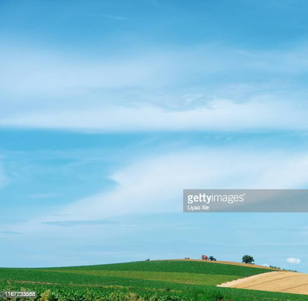 tranquil scene in biei - hokkaido stock pictures, royalty-free photos & images