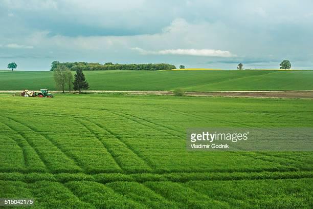 Tranquil scene of agricultural landscape
