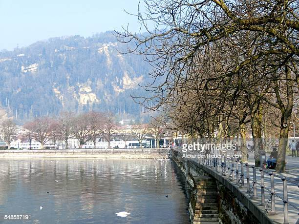 Tranquil View Of Lakeshore During Sunny Day