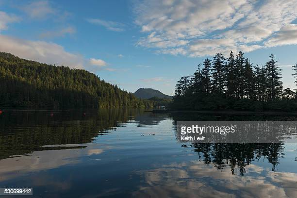 Tranquil water reflecting trees and sky; Skeena-Queen Charlotte, British Columbia, Canada