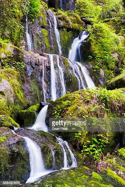 tranquil waterfall in the smokies - roaring fork motor nature trail stock pictures, royalty-free photos & images
