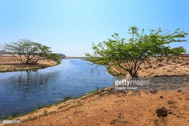 Tranquil waters of Khor Rori (Rouri), Land of Frankincense UNESCO World Heritage Site, near Salalah, Dhofar Region, Oman