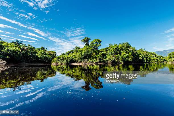 Tranquil waters on a river in the Amazon state Venezuela