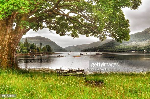 tranquility of loch goil - simon crockett stock pictures, royalty-free photos & images
