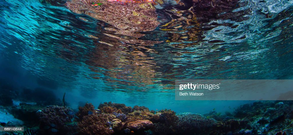 Tranquility : Stock Photo