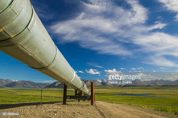 trans alaska oil pipeline, atigun canyon - pipeline stock pictures, royalty-free photos & images