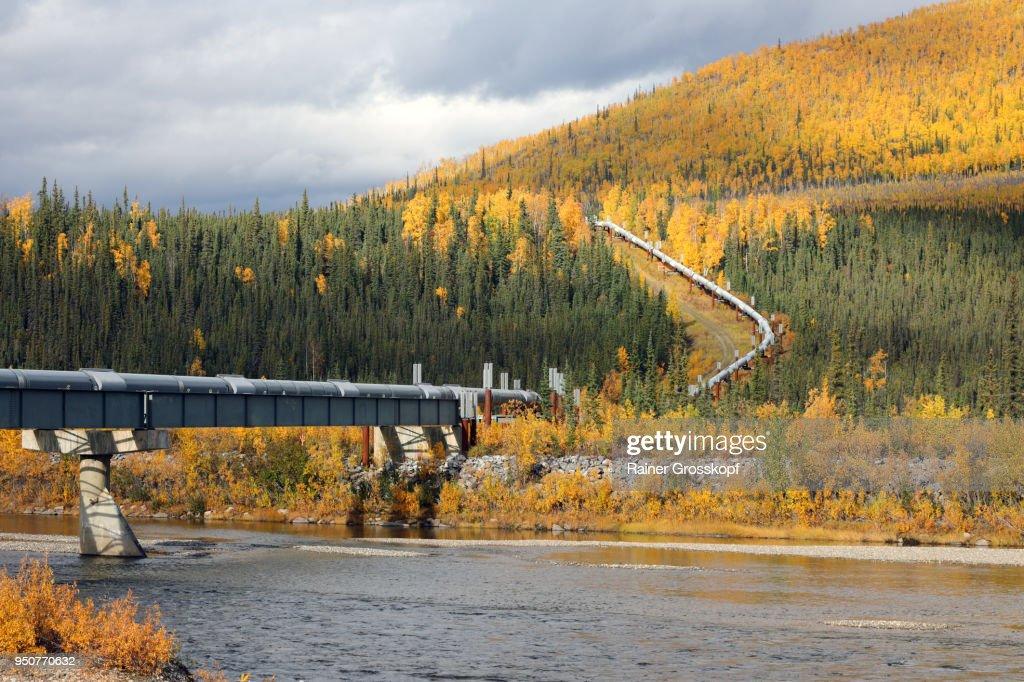 Trans-Alaska Pipeline and Dalton Highway : Stock-Foto