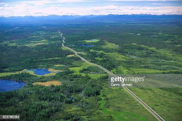 trans-alaska pipeline over taiga - paisajes de alaska fotografías e imágenes de stock